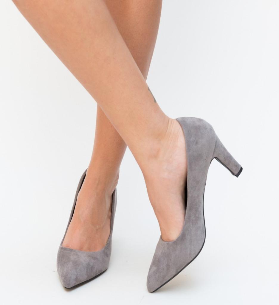 Pantofi Erba Gri