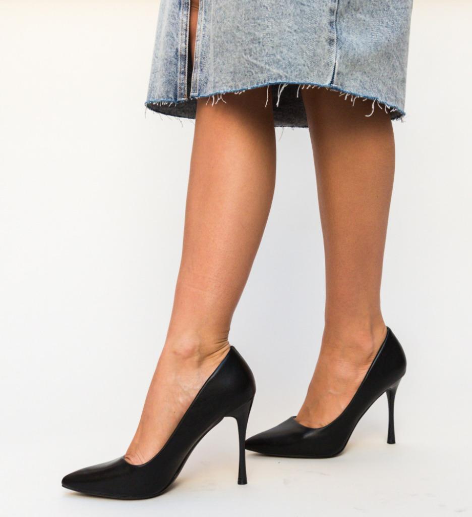 Pantofi Franco Negri