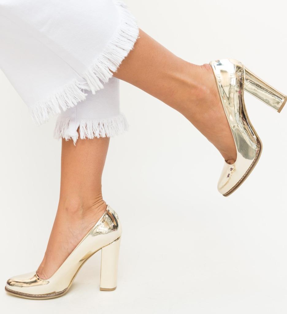 Pantofi Aniel Aurii imagine