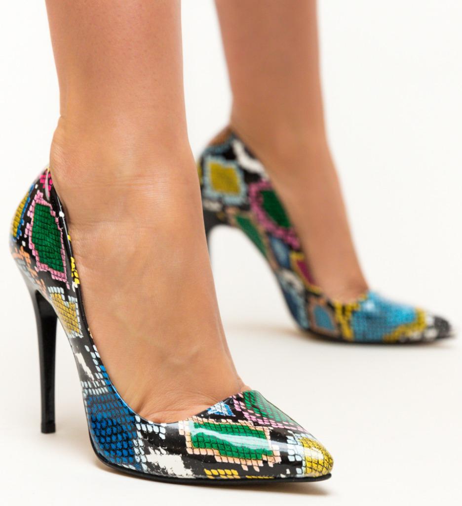 Pantofi Kiton Snake 2