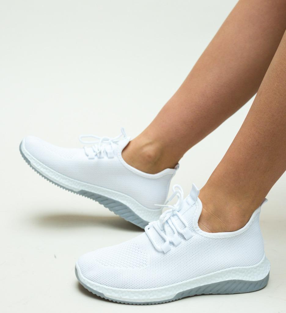 Pantofi Sport Fisher Albi