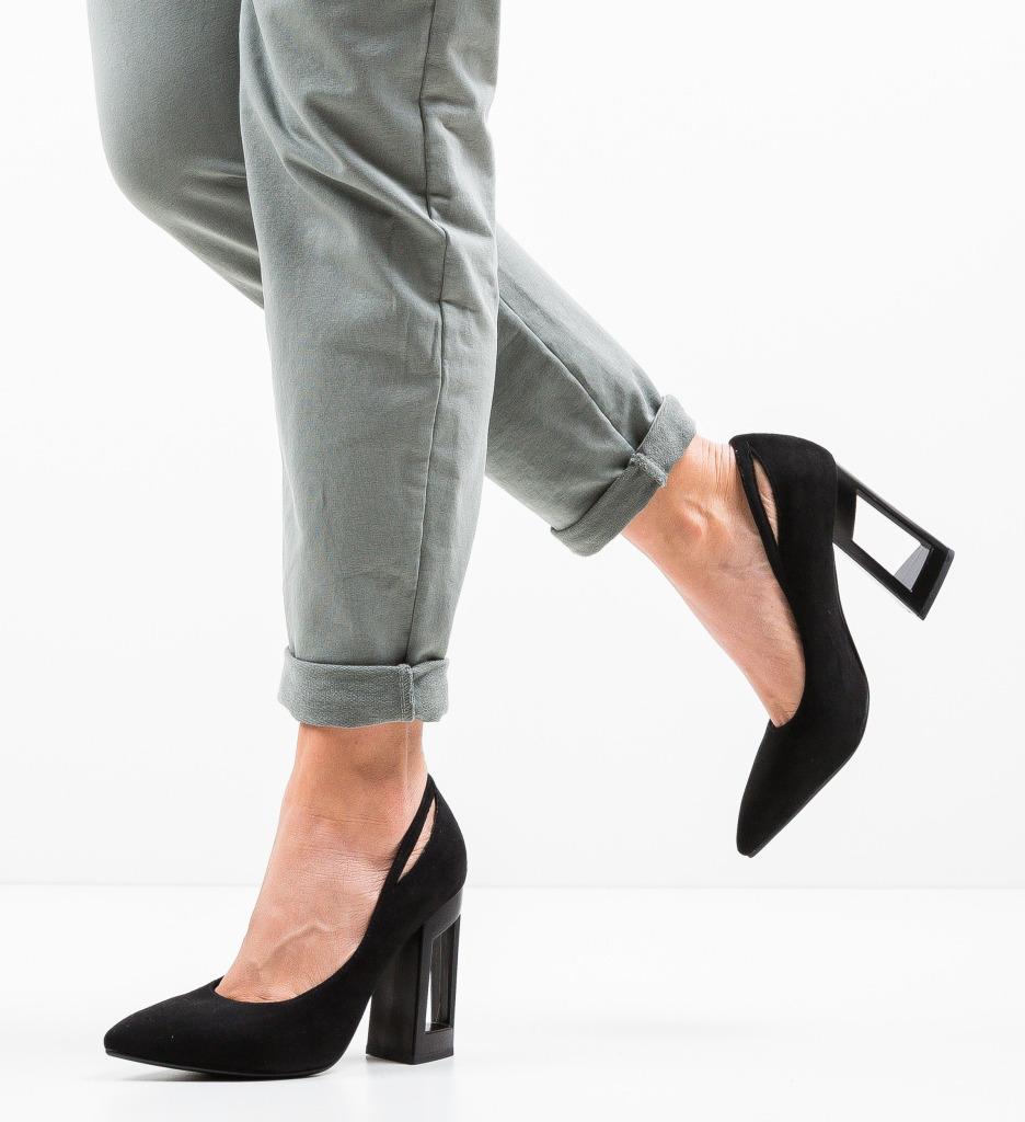Pantofi Roy Negri