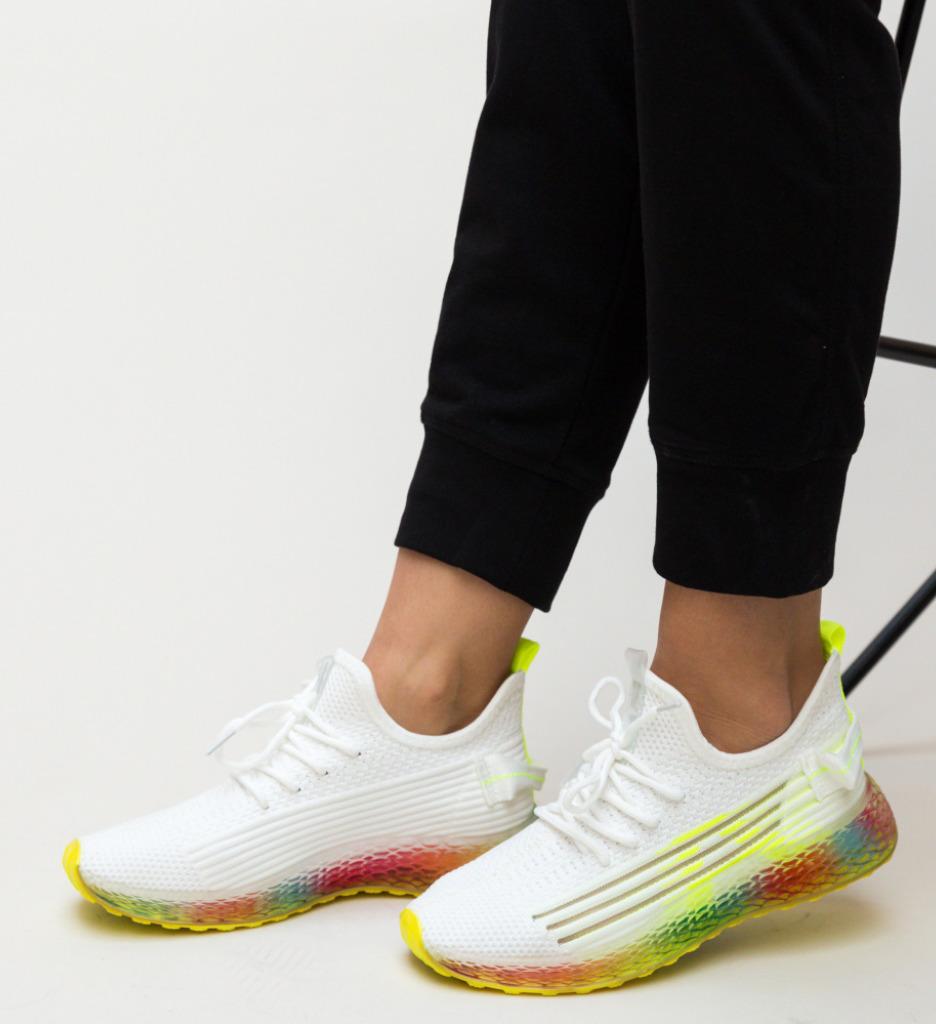 Pantofi Sport Jamo Verzi