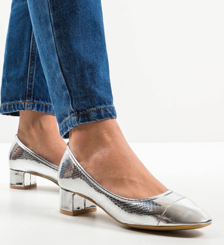 Pantofi Camro Argintii