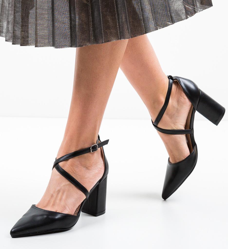 Pantofi Dasibas Negri