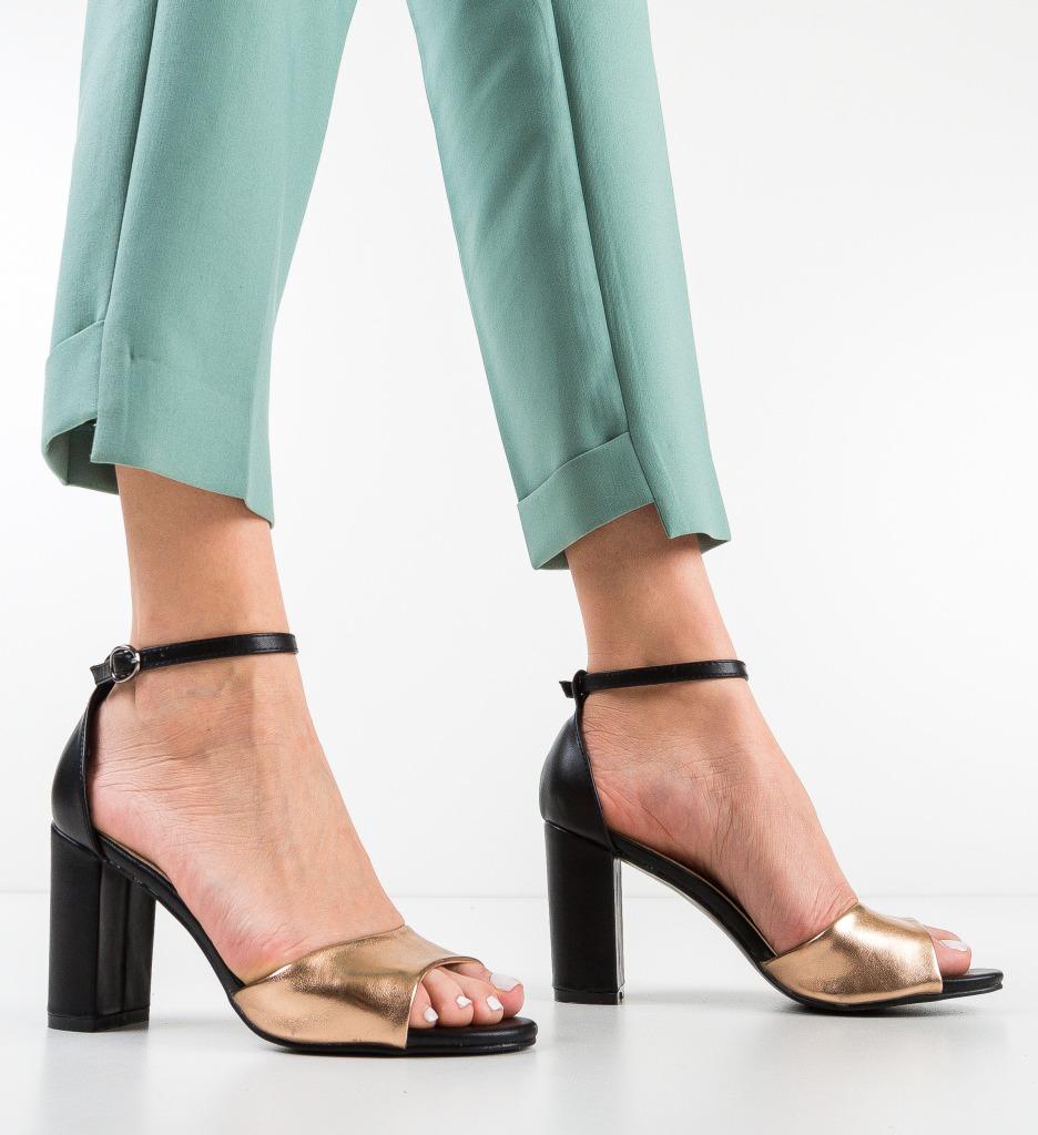 Sandale Dolan Aurii 2