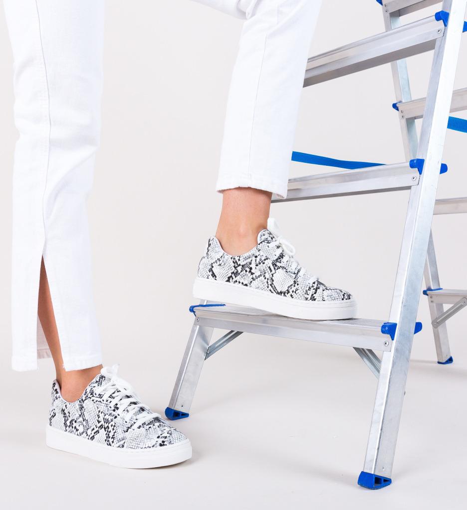 Pantofi Sport Timo Albi