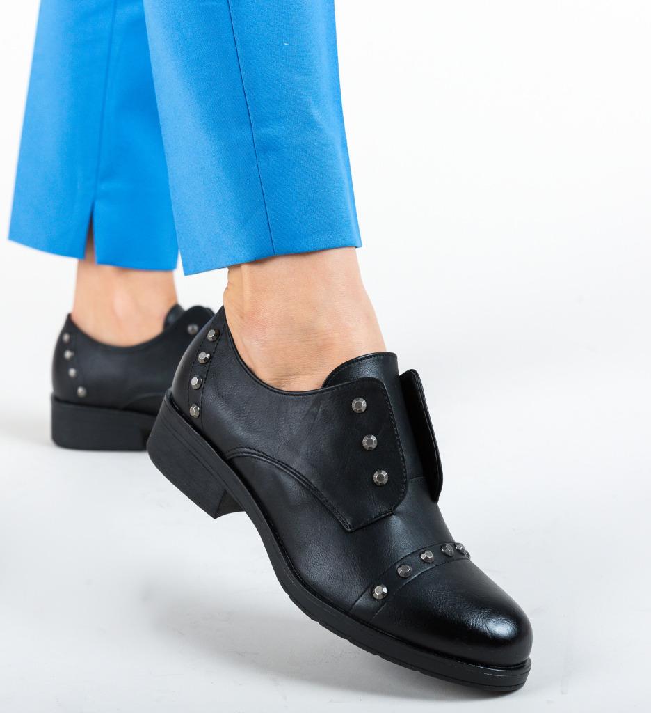 Pantofi Casual Branch Negri
