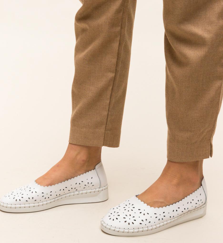 Pantofi Casual Egipt Albi