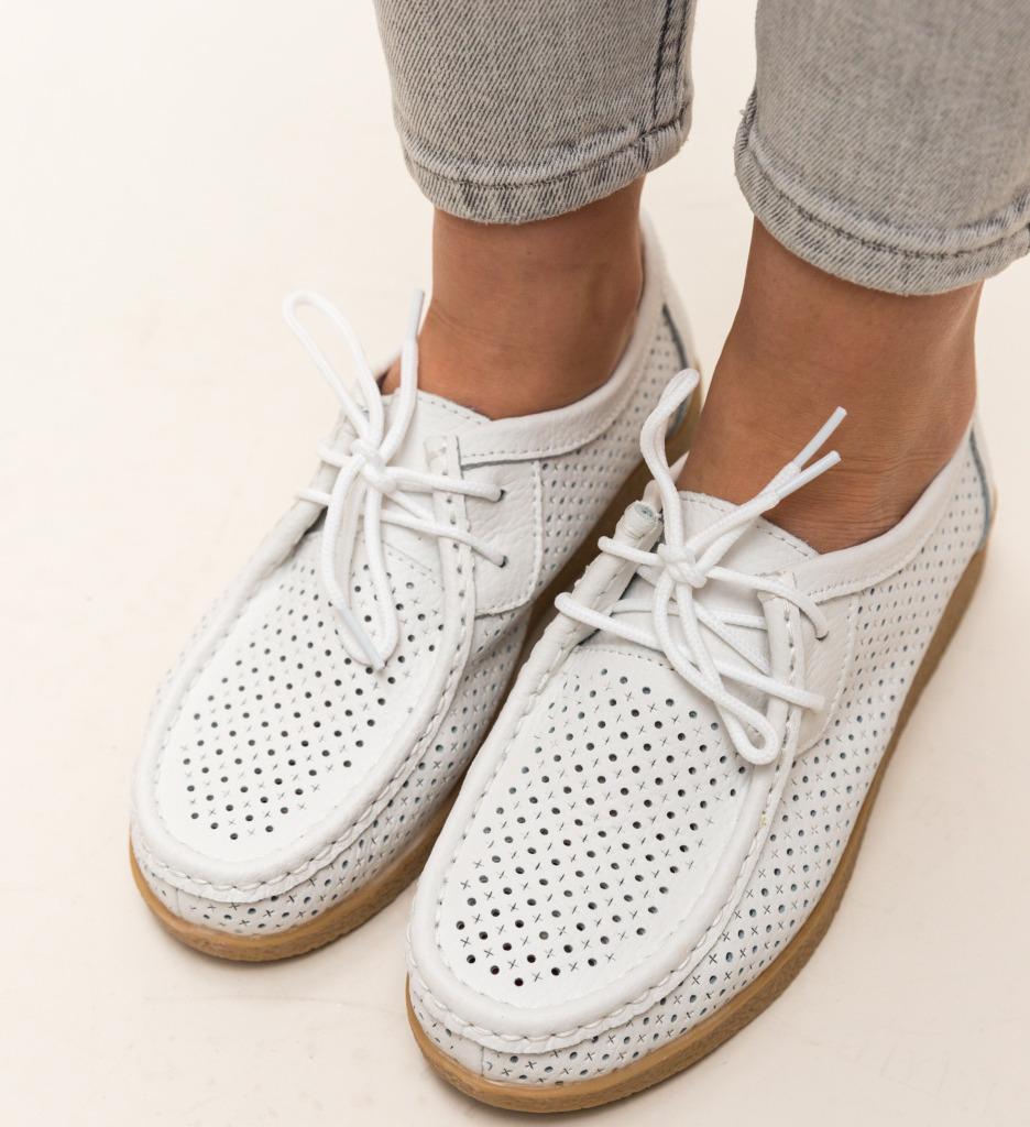 Pantofi Casual Yorker Albi