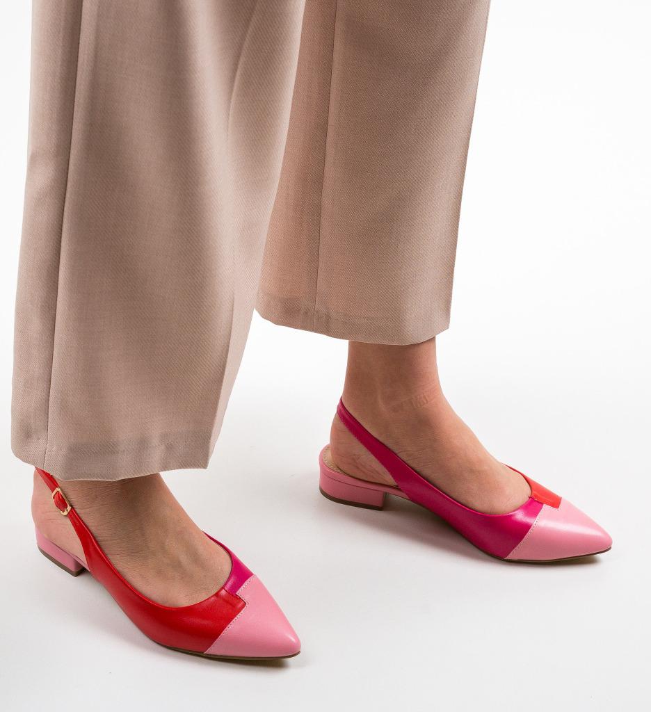 Pantofi Dickerson Roz