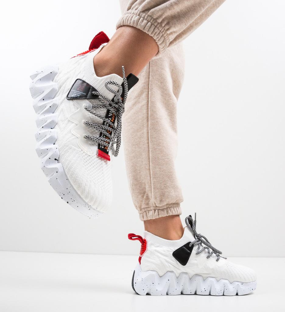 Pantofi Sport Greleko Albi