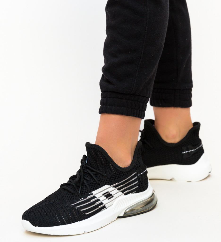 Pantofi Sport Lino Negri
