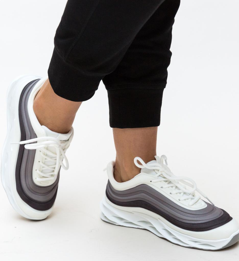 Pantofi Sport Austen Negri