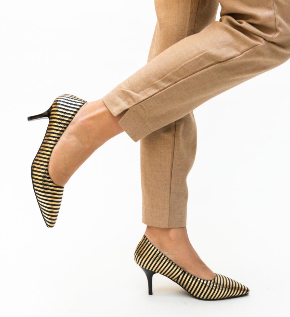 Pantofi Allan Aurii