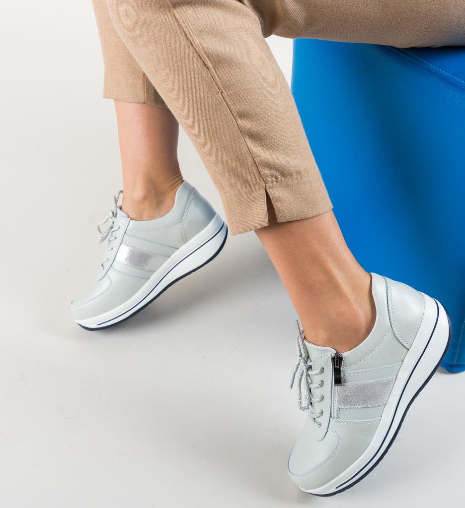 Pantofi Casual Craig Argintii