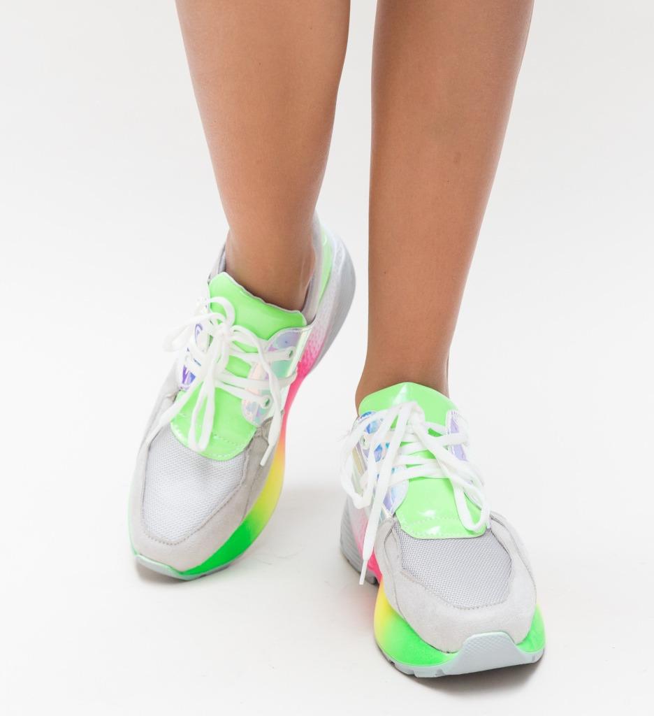 Pantofi Sport Bran Gri