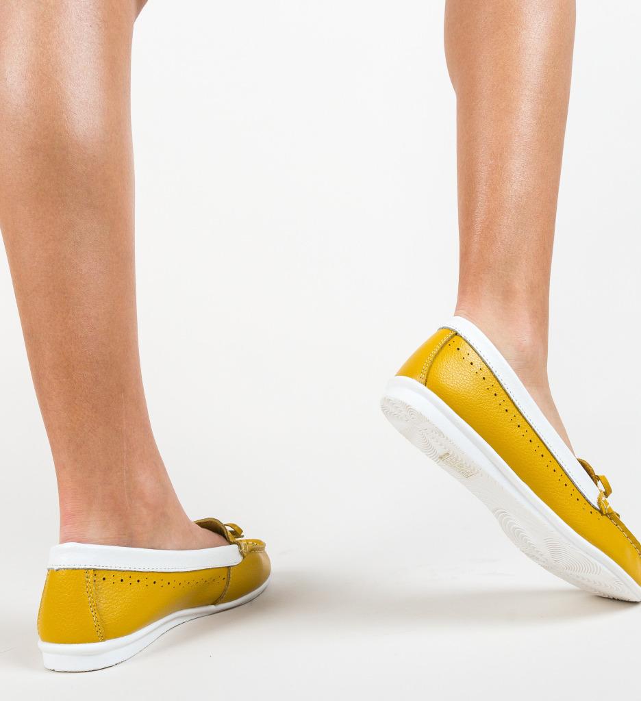 Pantofi Bordo Galbeni imagine