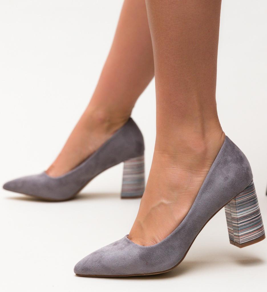 Pantofi Ferne Gri