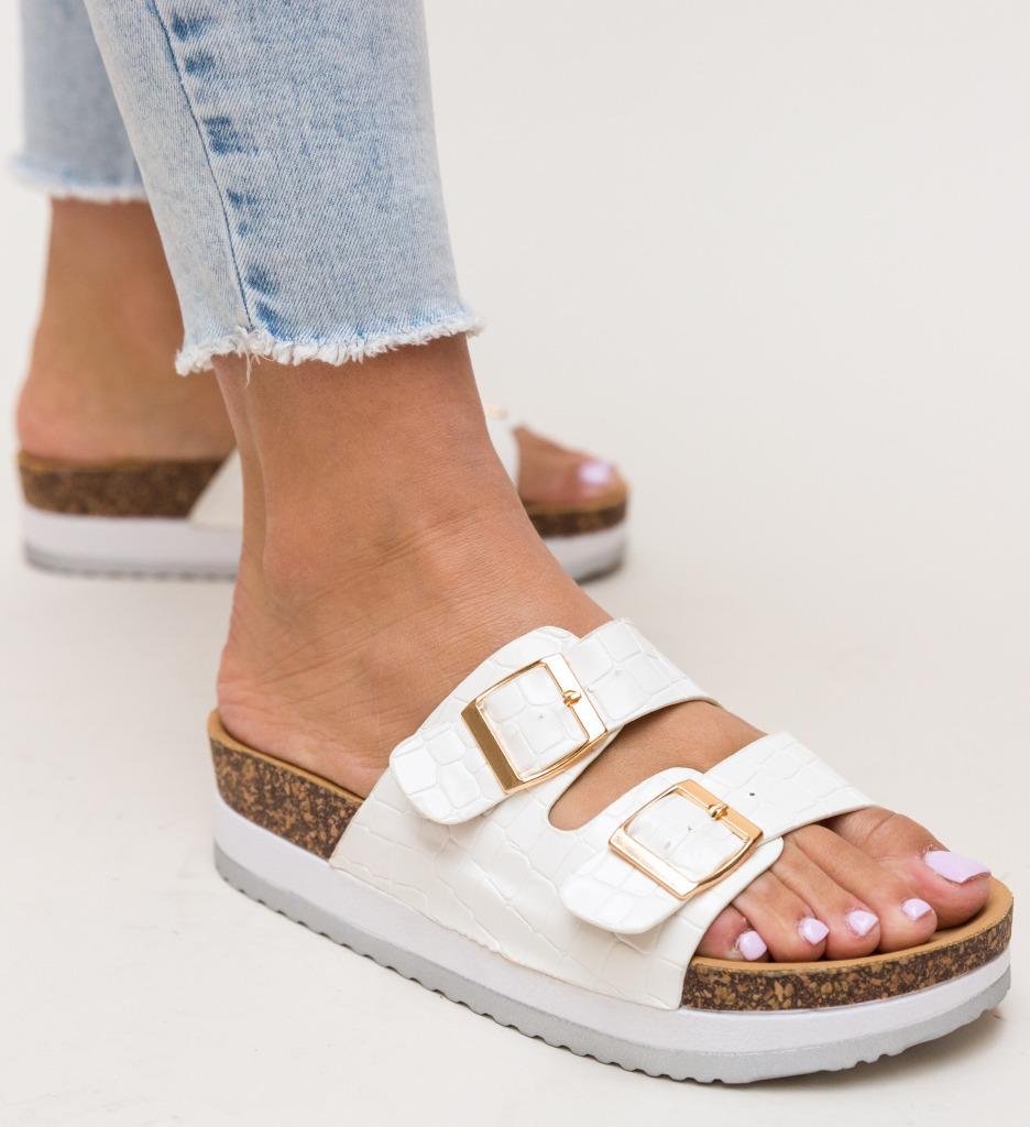 Papuci Aly Albi