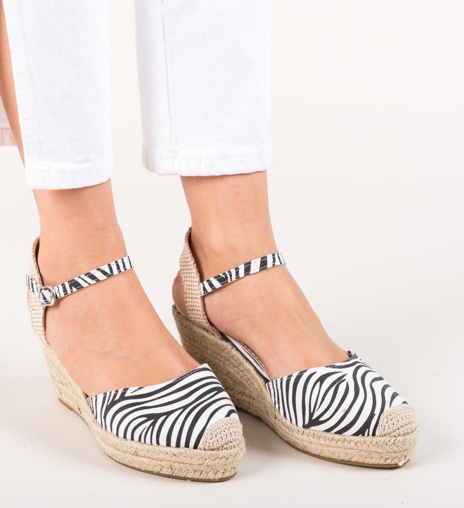Platforme Jibril Zebra