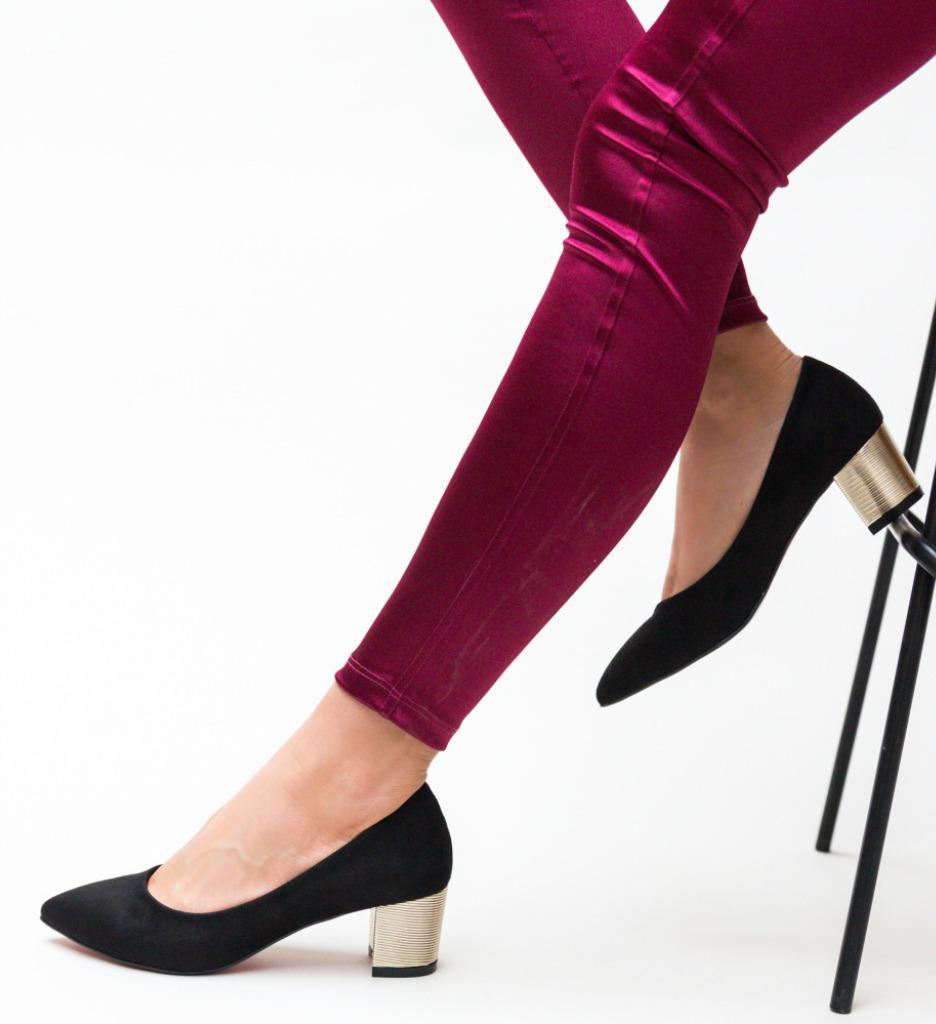 Pantofi Richie Negri 2