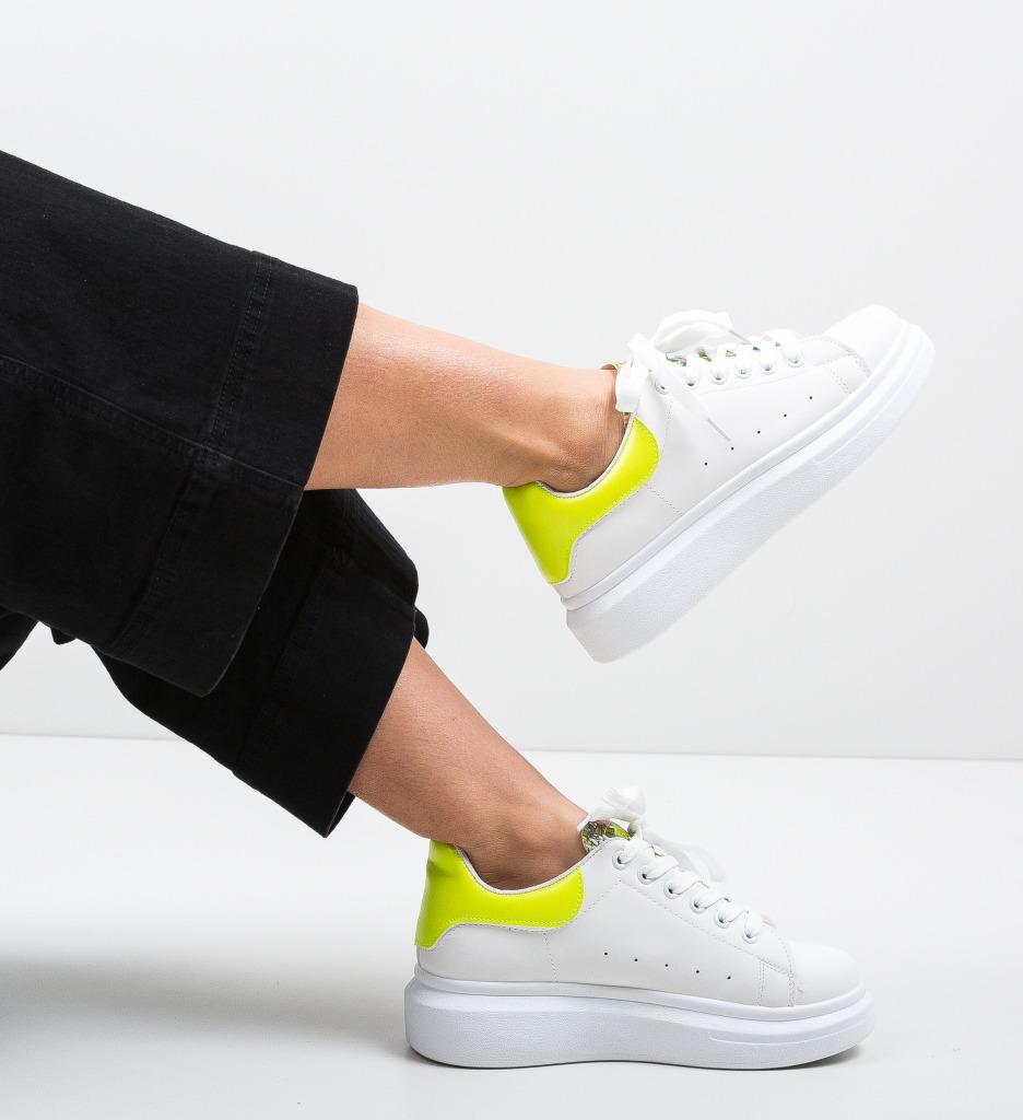 Pantofi Sport Travis Albi 6