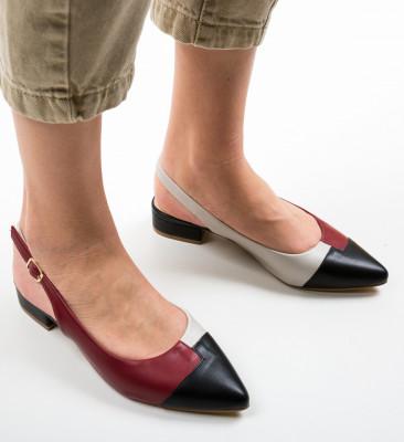 Pantofi Dickerson Grena