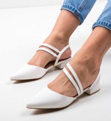 Pantofi Brad Albi