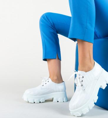 Pantofi Casual Taylor Albi
