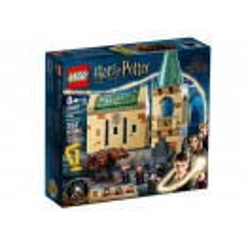 Castelul Hogwarts: Intalnirea cu Fluffy