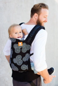 Tula Toddler Carrier - Concentric