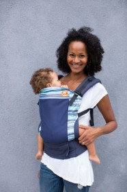 Tula Toddler Carrier - COAST FROST
