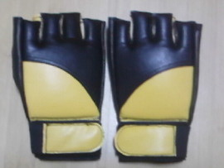 Poze Manusi Wing Chun-MMA 1