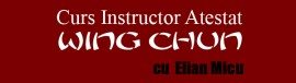 Curs Instructor Wing Chun