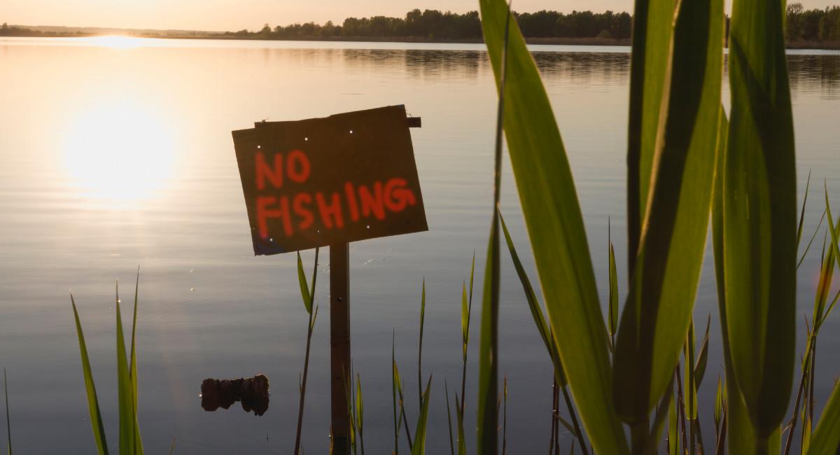 Despre prohibitie si sezonul de pescuit 2021!
