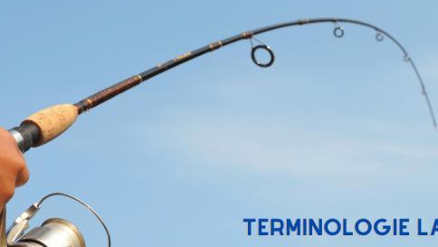 Terminologie lanseta pescuit - blanc, mandrina, maner | Dictionar pescaresc