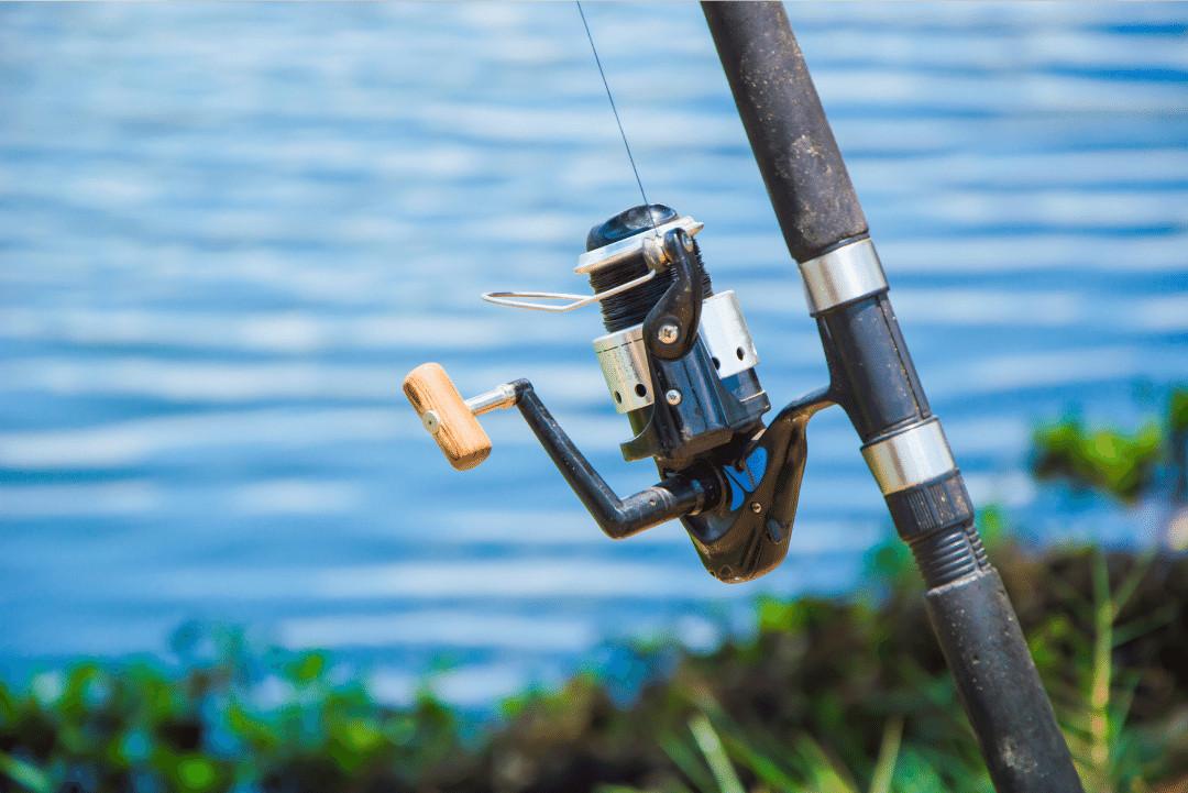 Clasificarea mulinetelor si elementele componenete   Ghidul pescarului!