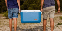 Lazi frigorifice portabile