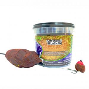 Pasta Solubila 400g MG Carp Fishmeal