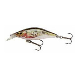 Vobler Shallow Baby Shad R. Dying Roach 4cm/ 2.5g Cormoran