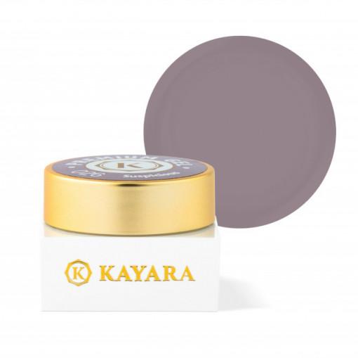 Gel color premium UV/LED Kayara 026 Suspicious