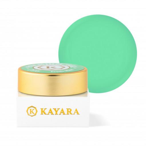 Gel color premium UV/LED Kayara 095 Fresh Mint
