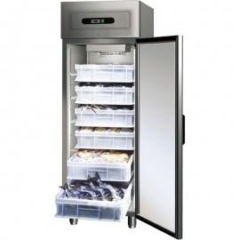 Dulapuri frigorifice pentru peste