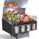 Vitrina frigorifica expunere flori, 118 x 95 x 118 cm
