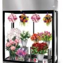 Vitrina frigorifica pentru flori L 2200 mm