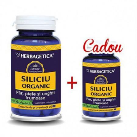 Siliciu Organic 60cps + 10cps Cadou Herbagetica