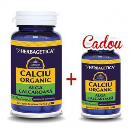 Calciu Organic 60cps + 10cps Cadou Herbagetica