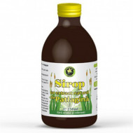 Sirop patlagina Hypericum Impex 250 ml