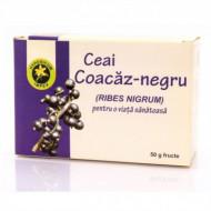 Ceai Coacaz negru -Fructe Hypericum vrac 50 g